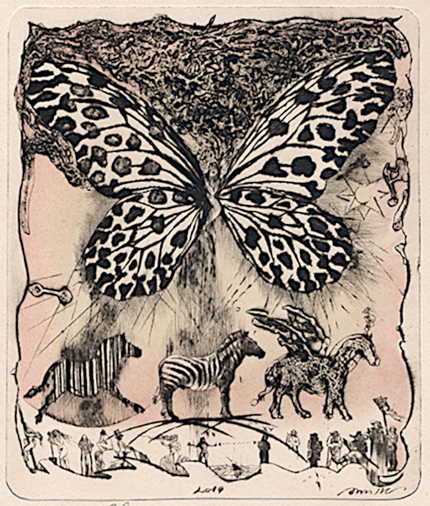 Пеперудка 1