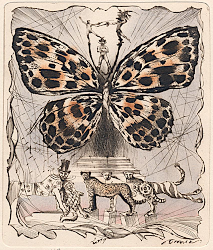 Пеперудка 3